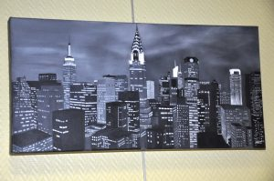 96068-site-new-york-by-night-janine-collot